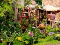 Bild zu Blumen- und Gartenschau Altzella