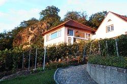 Ferienhaus zum Göhrischblick***